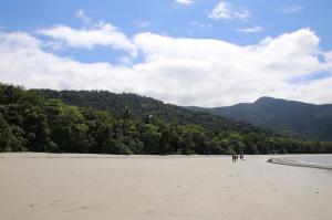 Go to Cape Tribulation, QLD