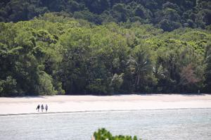 Go to Kulki Cape Tribulation Lookout, Cape Tribulation QLD