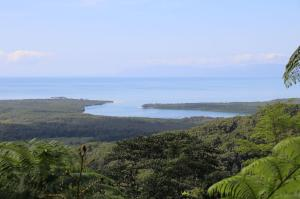 Click to see more of Walu Wurrigga Alexandra Range Lookout, Daintree QLD