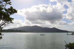 Go to Clump Point, Bingil Bay QLD
