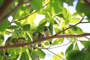 Click to see more of Burdekin Cascades Caravan Park, Ayr QLD