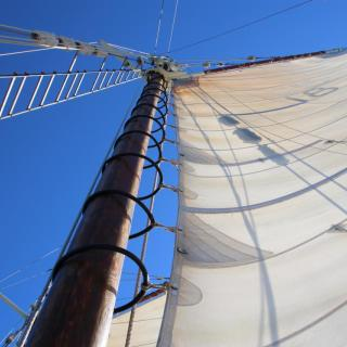 Derwent Hunter Tallship