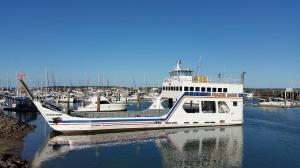 Go to Hervey Bay Marina, Hervey Bay QLD