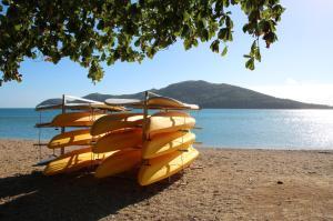 Go to Daydream Island, QLD