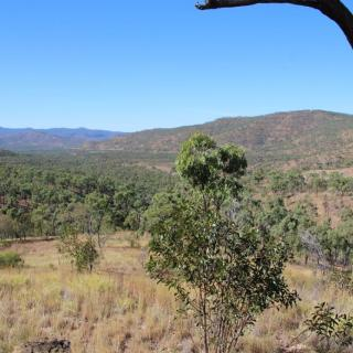 Drummond Range Lookout