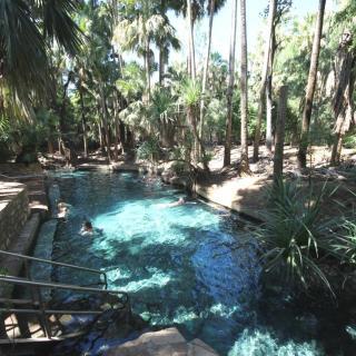 Rainbow Springs Thermal Pool