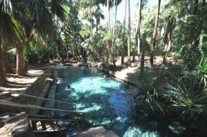 Go to Rainbow Springs Thermal Pool, Mataranka NT