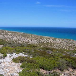 Nullarbor Lookout 3