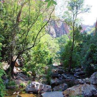 Ngamoowalem Conservation Park - Molly Spring