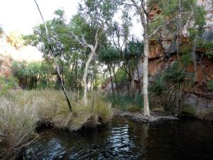 Click to see more of Ngamoowalem Conservation Park - Molly Spring, Kununurra WA