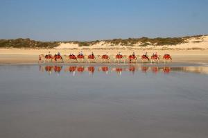 Click to see more of Broome Camel Safaris, Broome WA