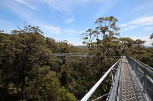 Click to see more of Valley of the Giants Treetop Walk, Walpole WA