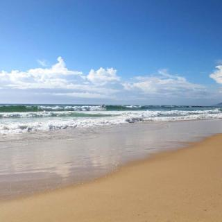 Back Beach - Black Head