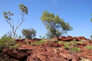 Click to see more of Island Stack Walk - Lawn Hill, Lawn Hill - Boodjamulla NP QLD