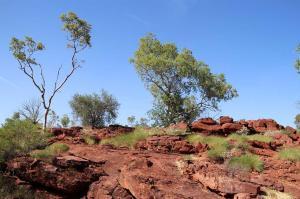 Go to Island Stack Walk - Lawn Hill, Lawn Hill - Boodjamulla NP QLD