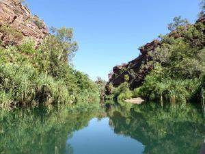 Go to Lawn Hill Gorge, Lawn Hill - Boodjamulla NP QLD