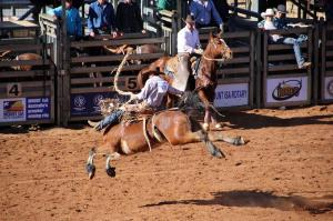 Click to see more of Mount Isa Rodeo, Mount Isa QLD