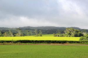 Click to see more of Nerada Tea Visitor Centre, Malanda QLD