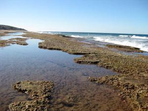 Click to see more of Red Rocks Reef, Seventeen Seventy 1770 QLD