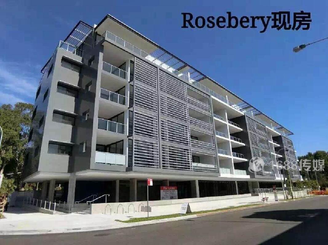 ROSEBERY 近泰勒 新南 悉大 大单间和小单间出租