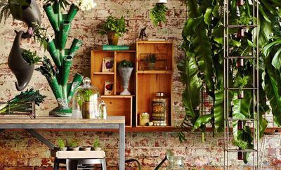 Teaser 2015 interior trends botanics image via birdcage design