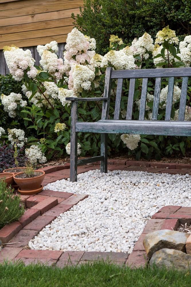 Website/Plants/2144398583/Images/Gallery/h_sundaefraise_15.0.jpg