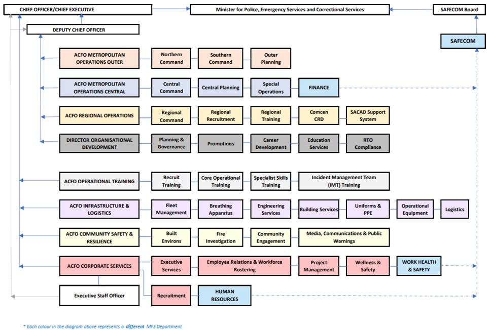 MFS organisational structure 2020-2021