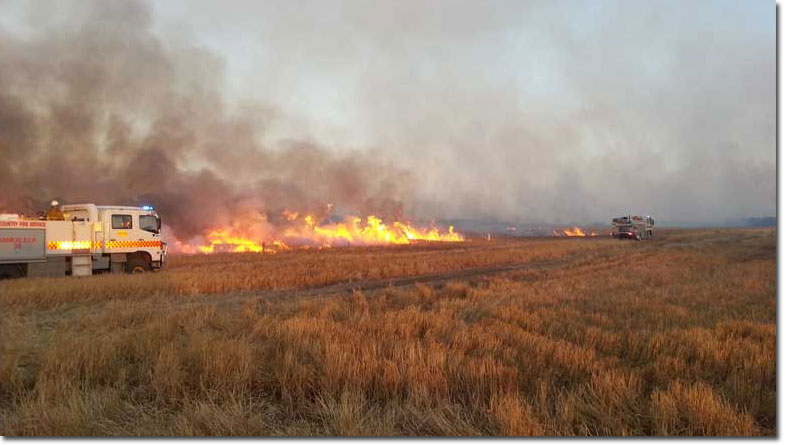 Grassfire in dry low humidity conditions