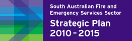 Sector Strategic Plan 2010