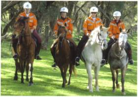 SES Mounted Team 1