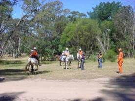 SES Mounted Team 2