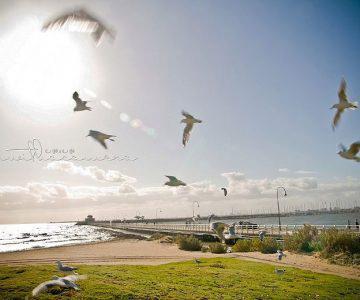 2011 Beach Shoot