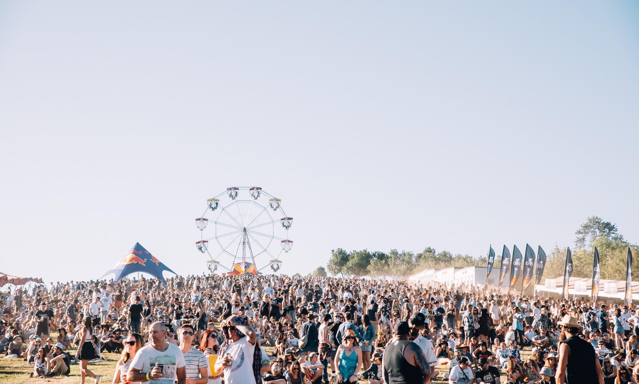 Big Pineapple Festival 2016