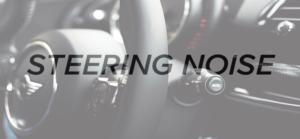 Steering Noise