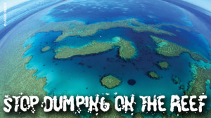 Stop Dumping on the Reef