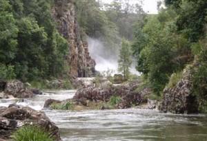 kondalilla-national-park2