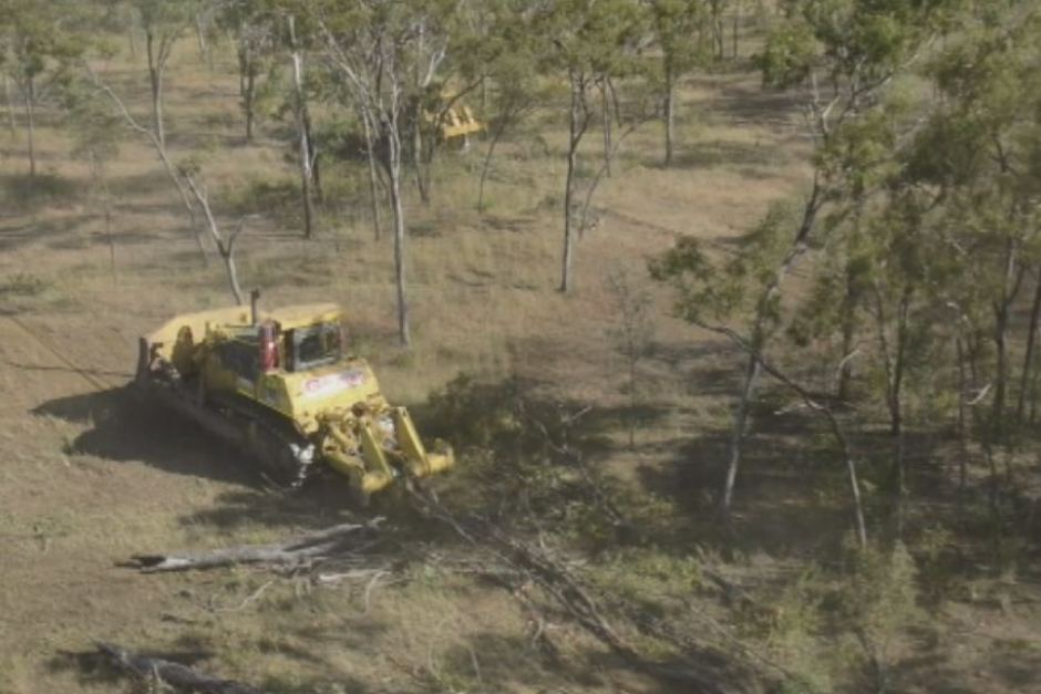 Olive Vale station clearing-abc image
