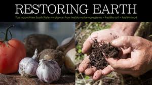 Restoring Earth-web post