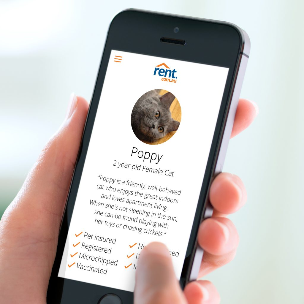 Rent Com Sign In: Property Managers Loving Rent.com.au's New Pet Resume