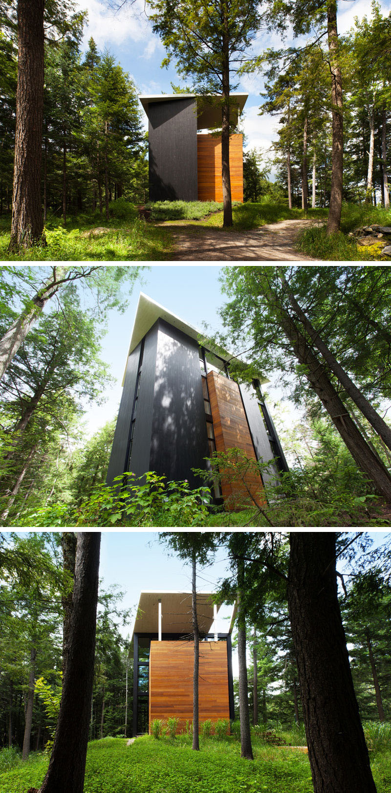 sculptor treehouse luxury iwanttoliveinatreehouse placesyoucouldlive architecture canada