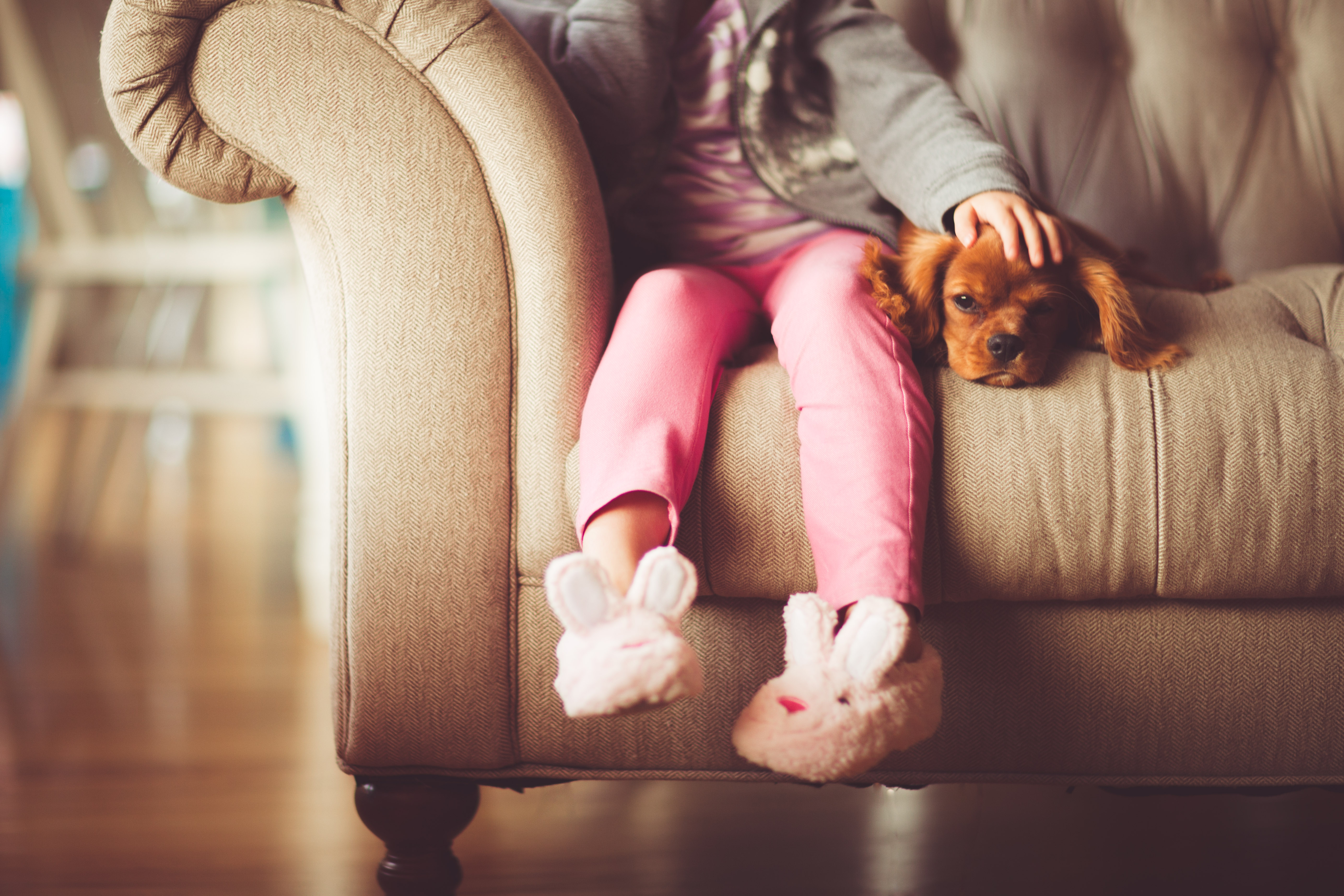 7 health benefits of owning pets