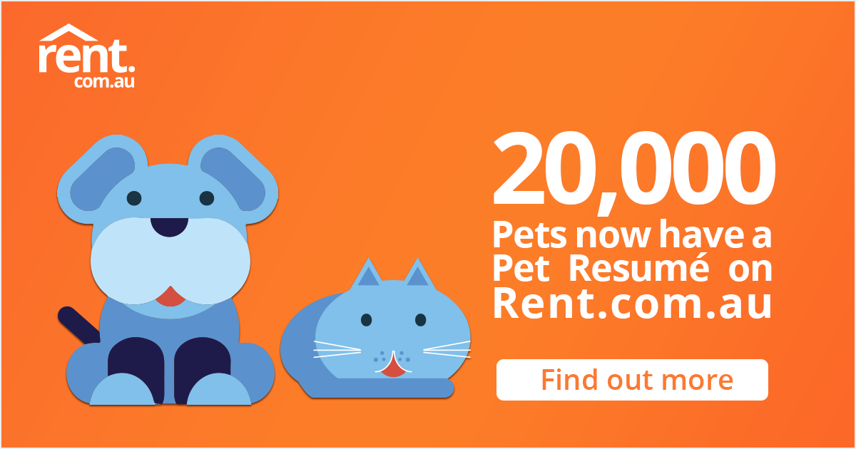 Create A Pet Resume To Help With Your Next Rental Application On