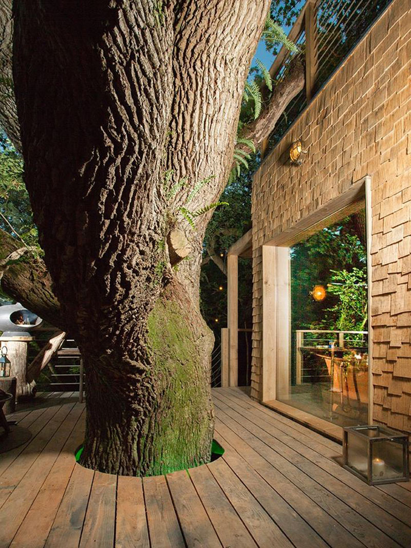 deck-surrounding-tree-170117-1144-10
