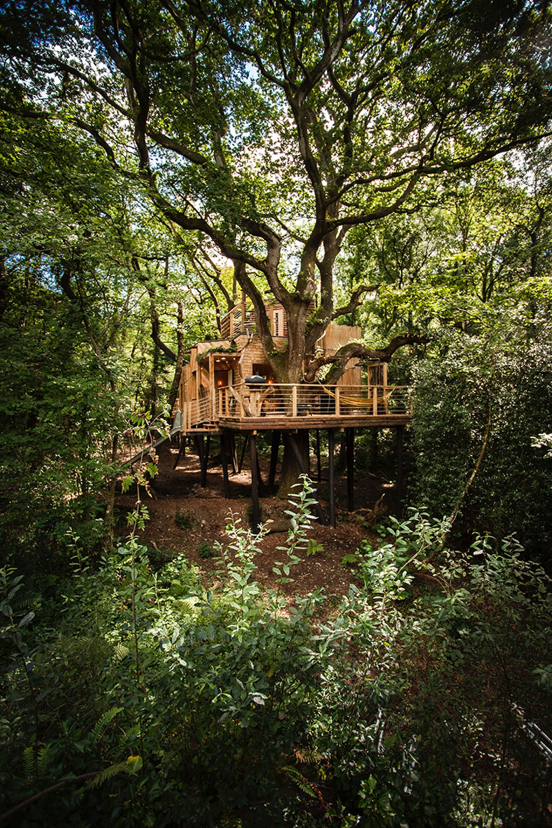 wooden-treehouse-design-170117-1143-02