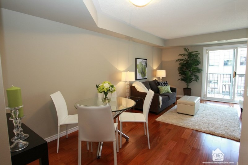 Areca-palm-in-a-modern-living-room