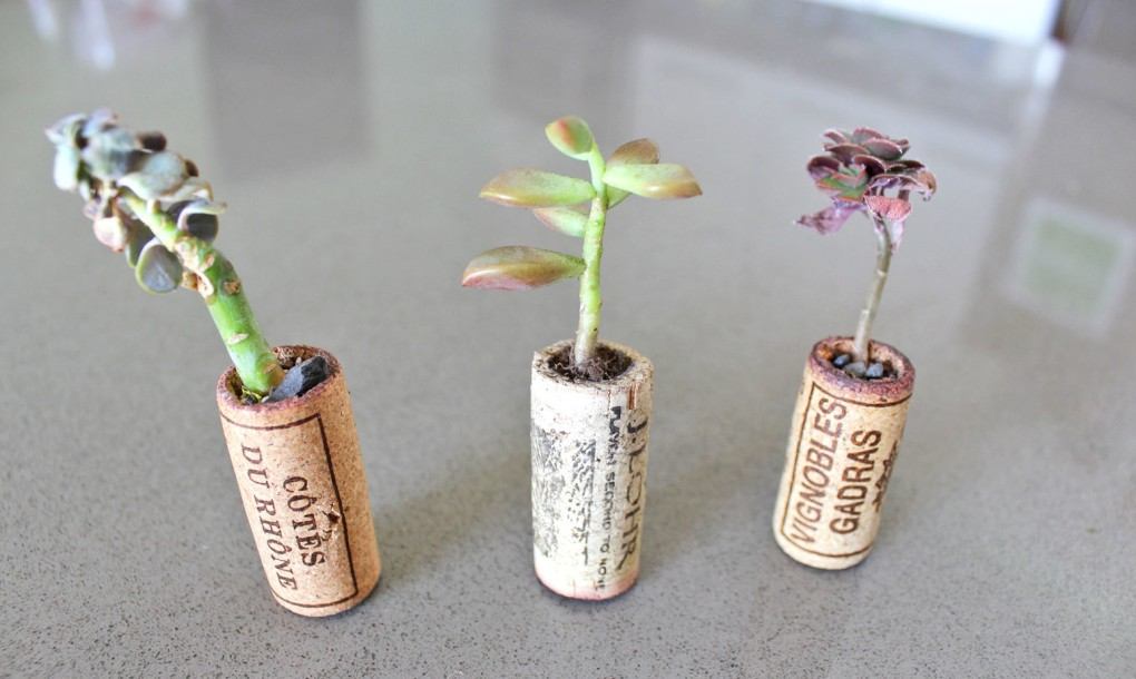 How-to-make-recycled-cork-planter-DIY-1020x610
