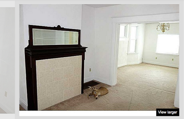 Awful real estate images