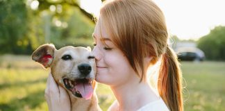 It's confirmed: Australia's renters are dog-obsessed