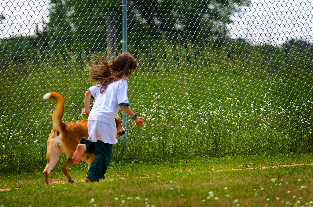 Want to get fit? Your dog may be your perfect training partner