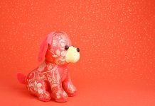 2018 is Year of the Dog: Which Chinese zodiac animal are you?